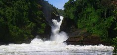 murchison-falls-national-park-uganda